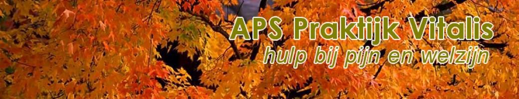 desktop-achtergrond-natuur-herfstbladeren.jpg